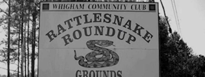 Rattlesnake Roundup Whigham