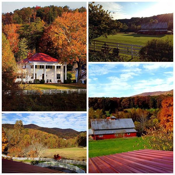 barn-wedding-venues-in-ga-mountain-laurel-farms