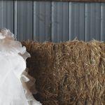 33 Rustic & Barn Wedding Venues Venues in Georgia
